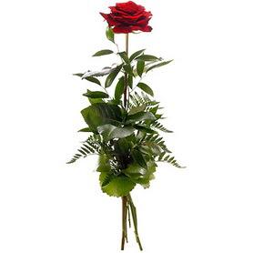Ankara Gölbaşı çiçek siparişi vermek  1 adet kırmızı gülden buket