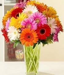Çiçekçi Gölbaşı çiçekçi mağazası  15 adet gerbera çiçek vazosu