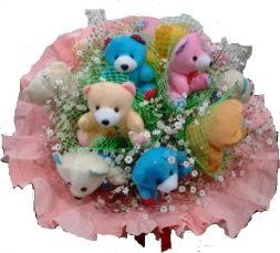 Ankara çiçekçi Gölbaşı İnternetten çiçek siparişi  11 adet ayıcıktan ayı buketi