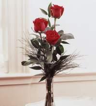 Gölbaşı çiçek siparişi yurtiçi ve yurtdışı çiçek siparişi  Vazoda 3 adet güzel gül