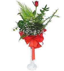 Gölbaşına çiçek , çiçekçi , çiçekçilik  Cam vazoda masum tek gül
