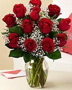 Sevgilime hediye 9 adet 1.ci kalite gül  Gölbaşına çiçek , çiçekçi , çiçekçilik