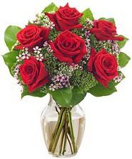 Kız arkadaşıma hediye 6 kırmızı gül  Gölbaşı çiçek yolla , çiçek gönder , çiçekçi
