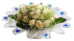 Ankara Gölbaşı hediye çiçek yolla  11 adet Beyaz güller özel cam tanzim