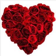 Gölbaşı çiçekçi telefonları  19 adet kırmızı gülden kalp tanzimi