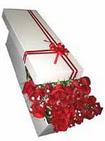 Gölbaşı anneler günü çiçek yolla  11 adet 1.kalite magnum güller
