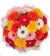 15 adet renkli gerbera buketi  Ankara Gölbaşı internetten çiçek siparişi