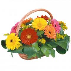 sepet içerisinde 11 adet gerbera  Gölbaşı çiçek siparişi yurtiçi ve yurtdışı çiçek siparişi