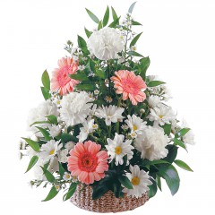 karışık mevsim sepet çiçeği  Ankara Gölbaşı çiçek gönderme