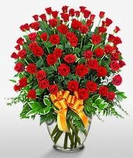 Görsel vazo içerisinde 101 adet gül  Gölbaşı Ankara çiçek yolla