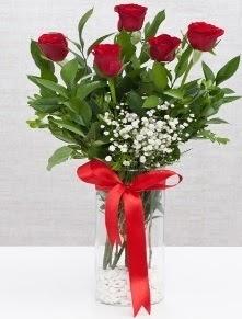 cam vazo içerisinde 5 adet kırmızı gül  Ankara Gölbaşı çiçek gönderme