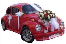 Sade gelin arabası süslemesi  Gölbaşı çiçekçiler  çiçek siparişi sitesi