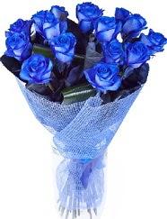 9 adet mavi gülden buket çiçeği  ankara Gölbaşı çiçek mağazası , çiçekçi adresleri