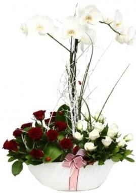 Tek dal beyaz orkide 8 beyaz 8 kırmızı gül  Ankara Gölbaşı hediye sevgilime hediye çiçek