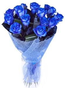 12 adet mavi gül buketi  Çiçekçi Gölbaşı çiçekçi mağazası