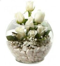 11 adet beyaz gül cam fanus çiçeği  Gölbaşı çiçekçiler  çiçek siparişi sitesi