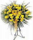 Ankara Gölbaşı internetten çiçek siparişi  Sari kazablanka Ferforje