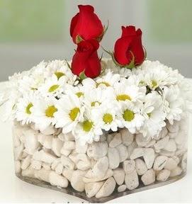 Mika kalpte papatyalar ve 3 gül  Gölbaşı anneler günü çiçek yolla