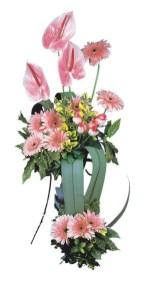 çiçek siparişi Gölbaşı çiçekçiler  Pembe Antoryum Harikalar Rüyasi