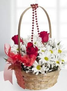 sepette 3 gül ve krizantem çiçekleri  Ankara Gölbaşı hediye sevgilime hediye çiçek