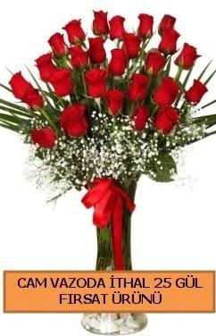 Cam vazoda ithal 1. kalite 25 gül  Gölbaşı çiçek siparişi yurtiçi ve yurtdışı çiçek siparişi