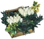 Gölbaşı ankara çiçek gönderme sitemiz güvenlidir  Ahsap sandik beyaz güller