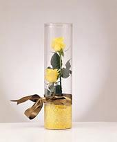 Gölbaşına çiçek , çiçekçi , çiçekçilik  2 adet çok masum sari gül