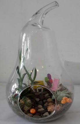 Orta boy cam armut terrarium  Ankara Gölbaşı hediye sevgilime hediye çiçek
