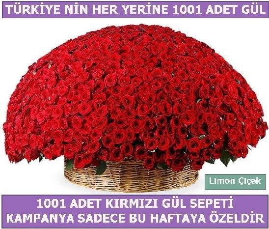 1001 Adet kırmızı gül Bu haftaya özel  Ankaradaki çiçekçiler Gölbaşı cicek , cicekci