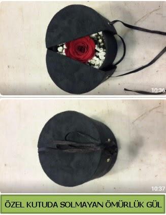 Solmayan ömürlük gül şoklanmış gül  Ankara Gölbaşı 14 şubat sevgililer günü çiçek