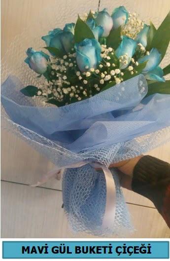 12 adet mavi gülden mavi buket  Gölbaşı anneler günü çiçek yolla