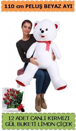 110 cm beyaz kocaman peluş ayı ve 12 gül  Ankara Gölbaşı 14 şubat sevgililer günü çiçek