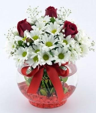 Fanusta 3 Gül ve Papatya  Gölbaşı çiçek siparişi yurtiçi ve yurtdışı çiçek siparişi