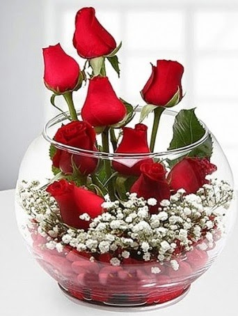 Kırmızı Mutluluk fanusta 9 kırmızı gül  Gölbaşı çiçekçi güvenli kaliteli hızlı çiçek