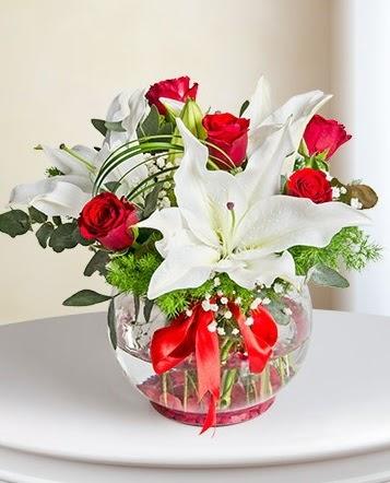 Fanus Vazoda 2 Lilyum ve 5 Gül Dansı  Ankara Gölbaşı 14 şubat sevgililer günü çiçek