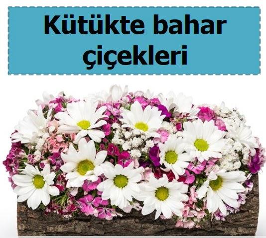 Kütük içerisinde kır çiçekleri  Gölbaşı çiçek online çiçek siparişi