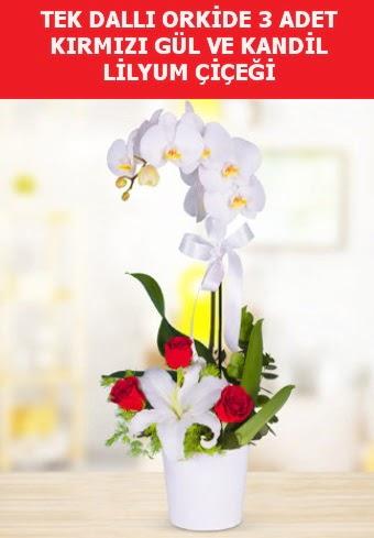 Tek dallı orkide 3 gül ve kandil lilyum  Ankara Gölbaşı çiçekçi uluslararası çiçek gönderme