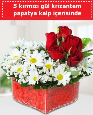 mika kalp içerisinde 5 kırmızı gül papatya  Ankara Gölbaşı 14 şubat sevgililer günü çiçek