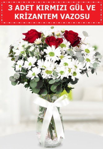 3 kırmızı gül ve camda krizantem çiçekleri  Ankara Gölbaşı 14 şubat sevgililer günü çiçek