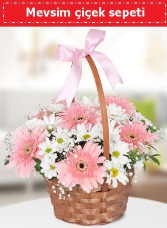 Mevsim kır çiçek sepeti  Gölbaşı çiçek online çiçek siparişi
