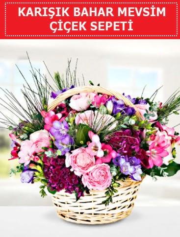 Karışık mevsim bahar çiçekleri  Gölbaşı ankara çiçek servisi , çiçekçi adresleri