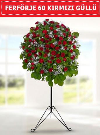 60 Adet kırmızı gülden ferförje  Gölbaşı ankara çiçek servisi , çiçekçi adresleri