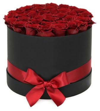 Siyah Kutuda 25 adet kırmızı gül  Gölbaşı çiçek gönder cicekciler , cicek siparisi