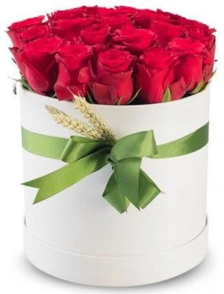 Özel kutuda 25 adet kırmızı gül çiçeği  Ankara Gölbaşı hediye sevgilime hediye çiçek