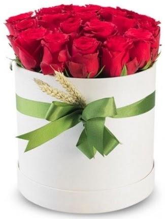 25 adet özel kutuda kırmızı gül  Ankara Gölbaşı çiçek gönderme  söz çiçekler