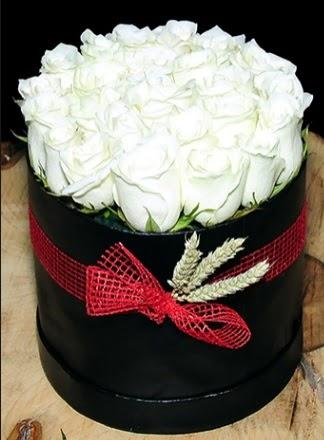 Özel kutuda 27 adet beyaz gül  Ankara Gölbaşı çiçek gönderme