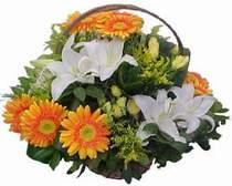 Ankara Gölbaşı çiçek siparişi vermek  sepet modeli Gerbera kazablanka sepet