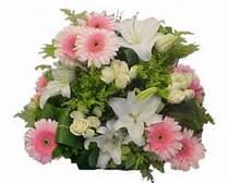 Çiçek yolla Gölbaşı internetten çiçek satışı  Gül kazablanka gerbera sepet çiçek modeli