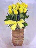 Ankara Gölbaşı internetten çiçek siparişi  sicak ates çiçek sepet modeli