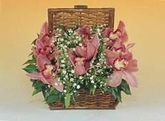 Ankara Gölbaşı çiçek gönderme  Sepet içerisinde orkide